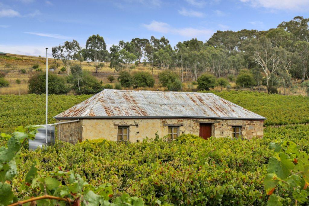 Wine Photography Adelaide